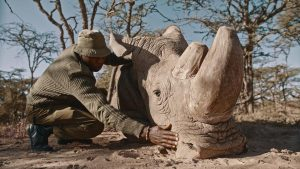 Australian Light Horse Troop assists anti-poaching unit to protect rhino