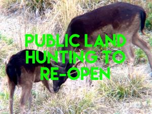 public land to open